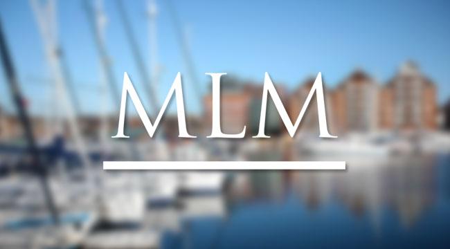 Mlm Network Marketing Diversity Employment Services
